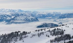 [Group 1]-Rigi16__MG_0223-13 images.jpg